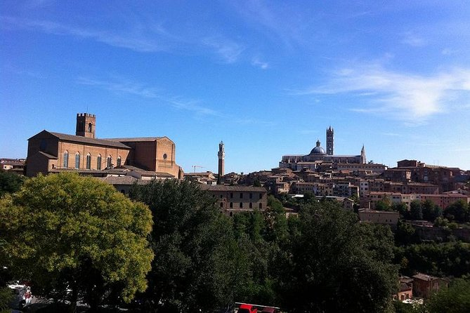 Private Tuscany tour: Siena, San Gimignano and Chianti. Day Trip from Florence