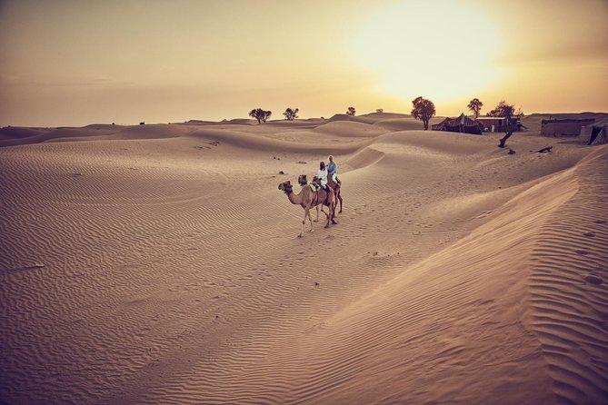 Private Camel Desert Safari Experience in Dubai
