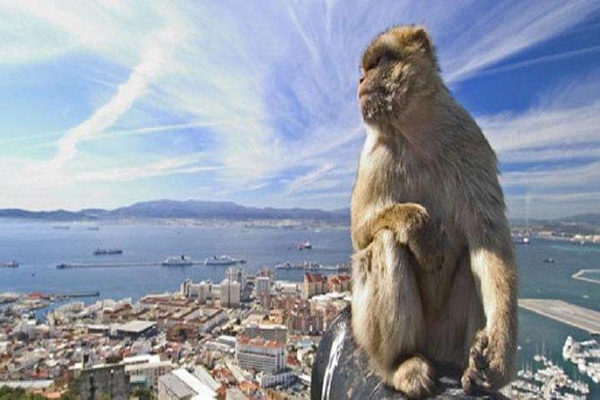 Excursion d'une journée à Gibraltar au départ de Séville
