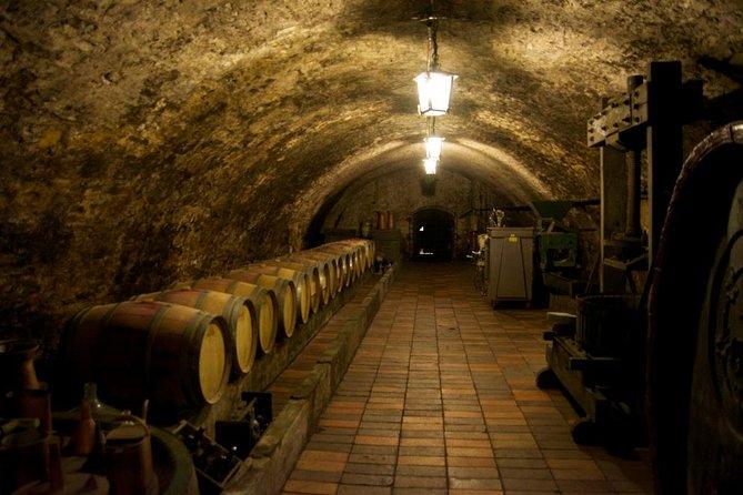 Wine Tasting Day Trip from Prague to Melnik