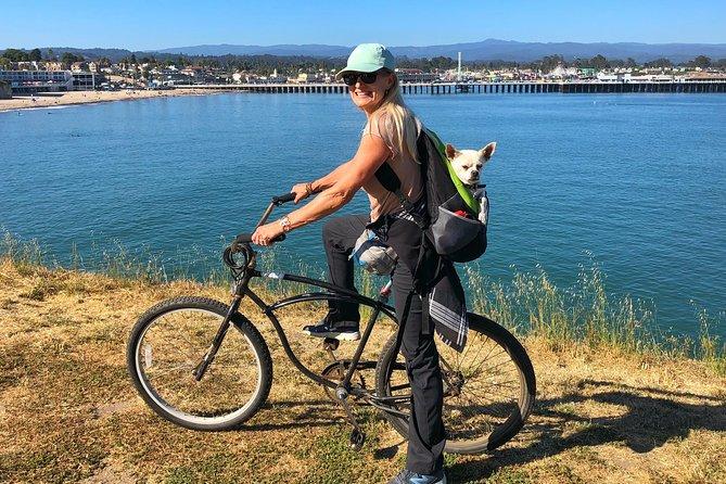Tour en bicicleta Santa Cruz