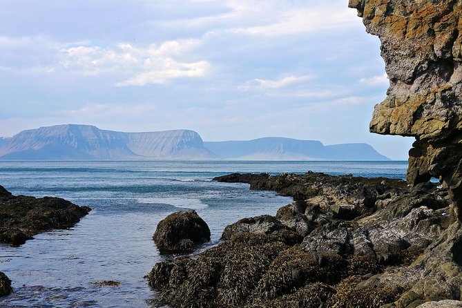 Full-Day Tour to Svalvogar Peninsula from Isafjordur