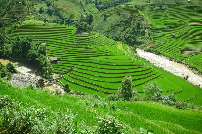Mu Cang Chai 3 days private tour from Hanoi