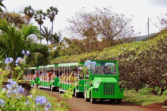 The Tropical Express at Maui Tropical Plantation photo 1