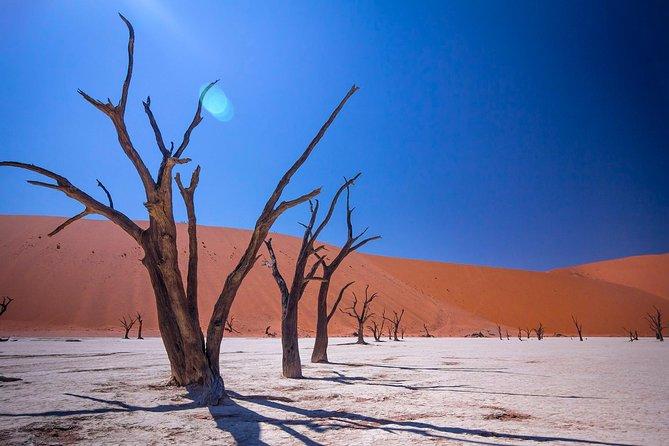 Namibian Tour