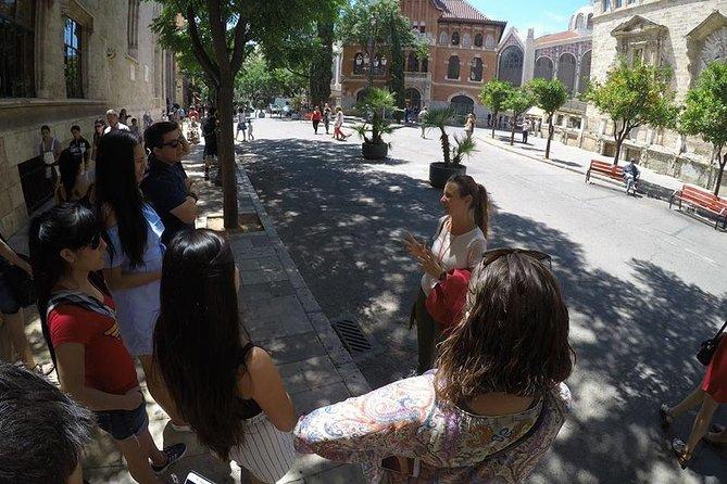Excursão a pé particular em Valência com guia turístico oficial de Valência