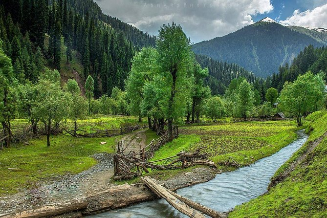 6-Day Private Sightseeing Excursion of Kashmir from Srinagar