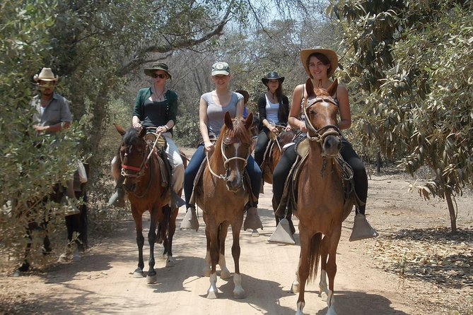 Horseback riding North of Peru pyramds of Batangrande) and Reserve Pomac forest