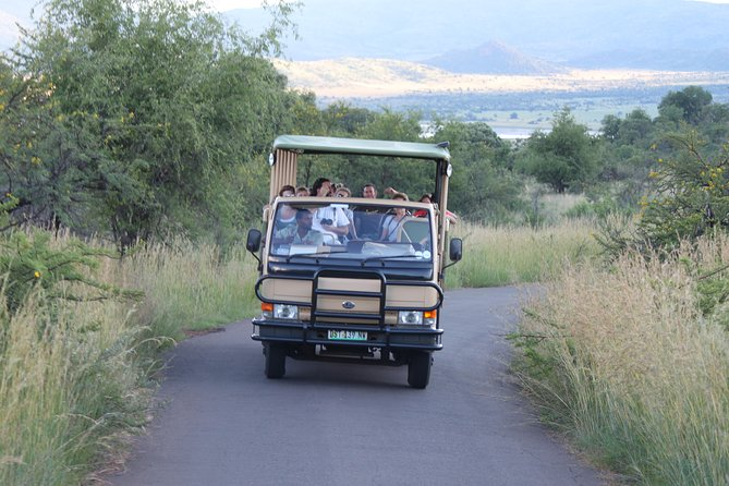 One night two day Pilanesberg National Park safari and open vehicle game drives