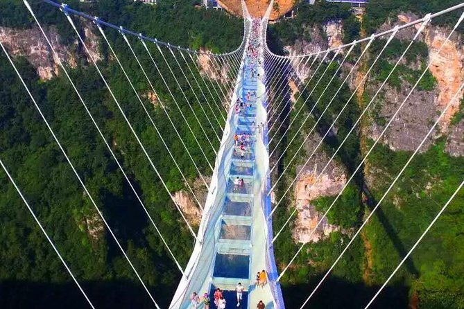 1 Day Zhangjiajie Grand Canyon and Glass Bridge Skywalk Tour