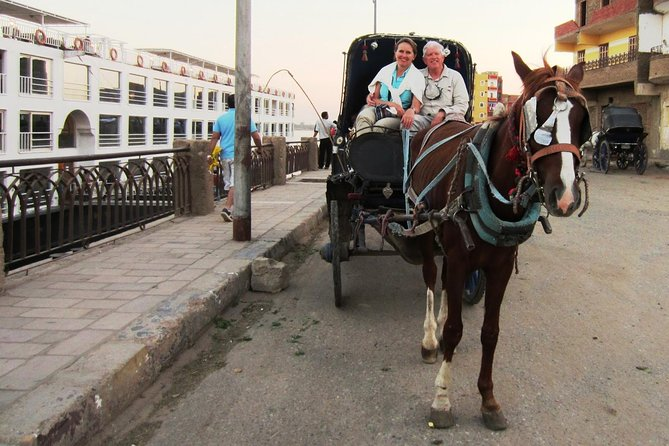 City tour by horse carriage.aswan