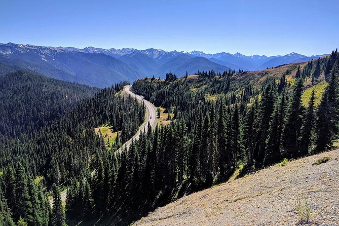 Olympic National Park - Luxury Small Group Day Tour with Lunch