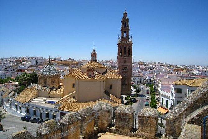 Private 8-hour Tour of Carmona and Seville from Seville with Hotel pick up