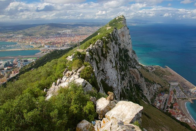 Private Full Day of Gibraltar from Malaga or Marbella hotel pick up and drop off