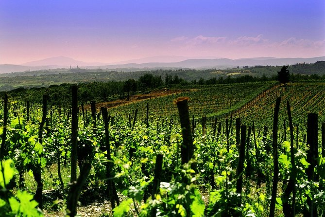 Private Tour to a winery in Franciacorta and Bergamo from Milan w/ Hotel pick-up