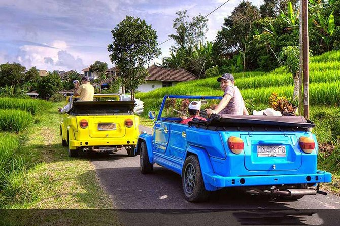 Private Tours-VW Safari-Volcano-Ubud Palace-Rice Terrace-Tirta Empul-Lunch