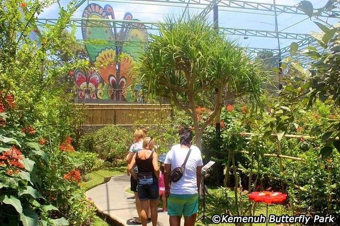Amazing Private Tours-Kemenuh Butterfly Park - Waterfall - Monkey Forest - Lunch