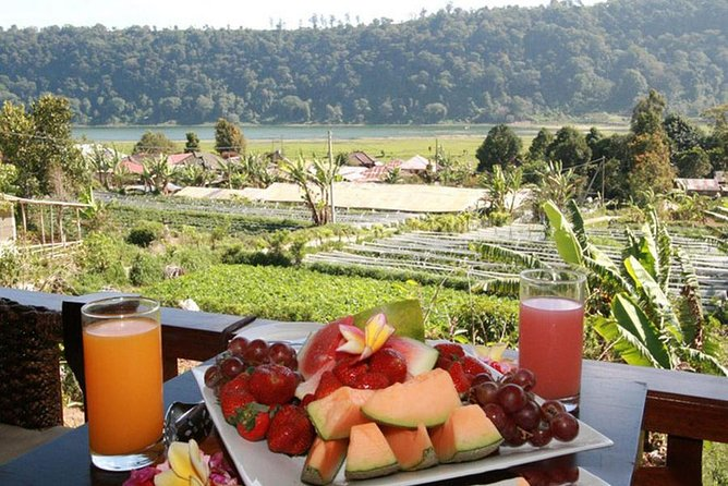 Amazing Private Tour-Bedugul-Unesco Rice Terrace-Batukaru-Tanah Lot Temple-Lunch