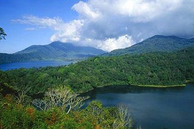 Best Private Tour-Watching Dolphin-Breakfast-Gitgit Waterfall-Twin lake-Bedugul