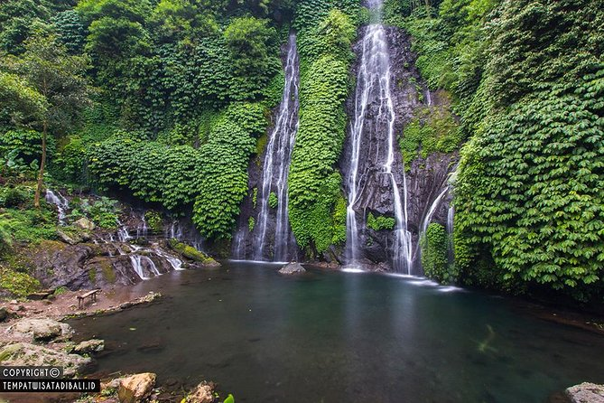 Private Tour: Lovina See Dolphin-Bayumala Waterfall-Twin lake-Ulundanu-Breakfast