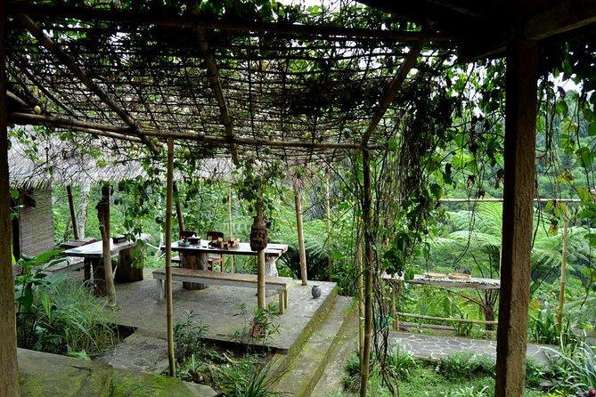 Amazing Private Full Day Tour-Tirta Empul Temple-Coffee Plantation-Batur Volcano