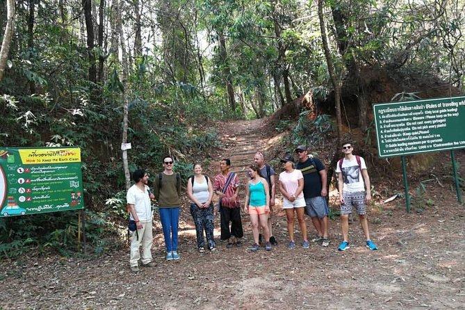 Doi Inthanon National Park & Trekking Pha Dok Siew