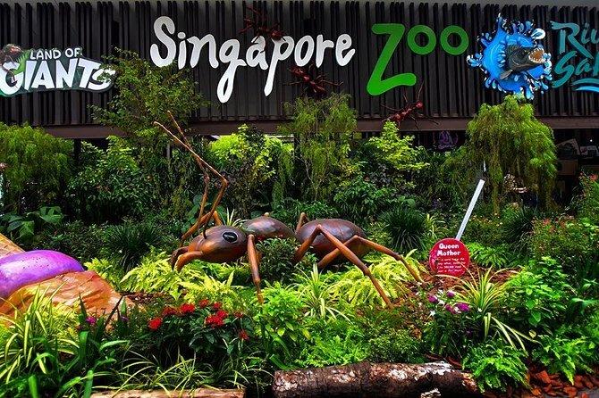 Singapore Zoo Ticket