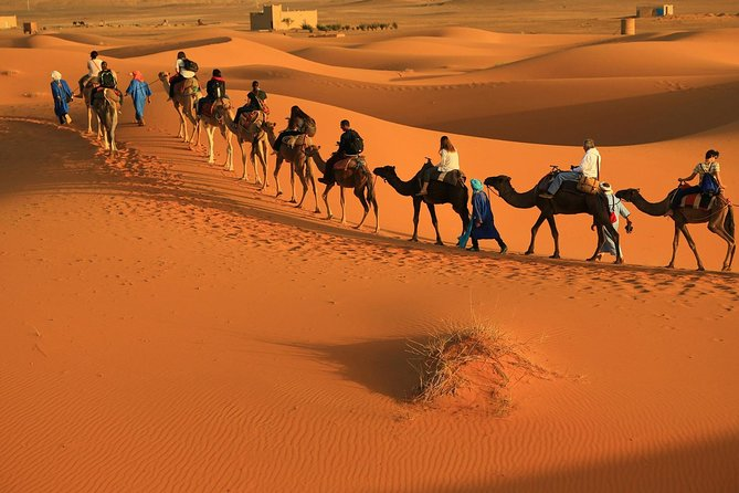 2 Days 1 Night Desert Tour from Fes