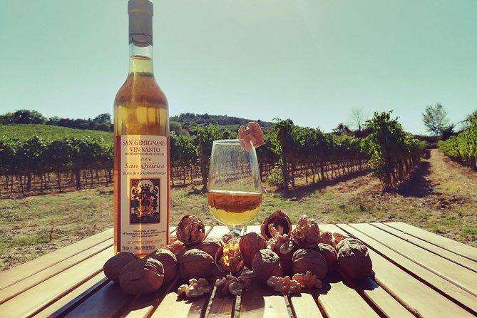 Maxi Gourmet Wine Tour San Gimignano Wine Tasting - San Quirico Winery