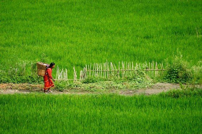 Private Half-Day Tour to Bungamati and Khokana Villages From Kathmandu