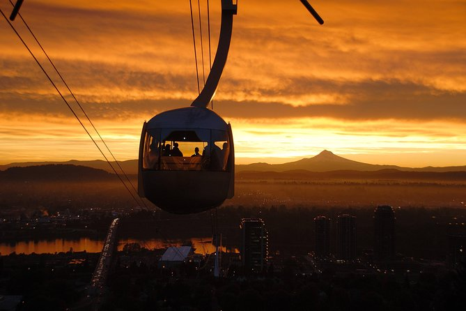 Aerial Tram and Rooftop Tour