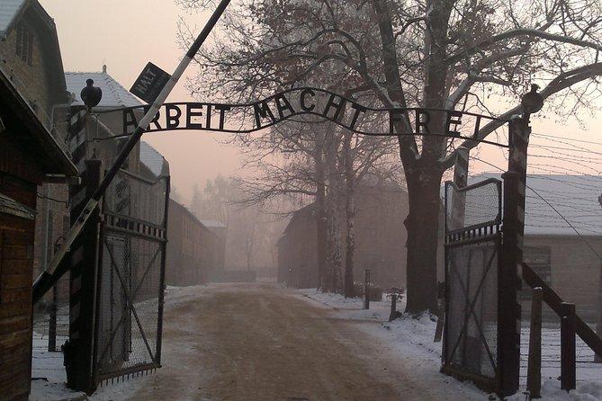 Auschwitz-Birkenau Museum Tour from Krakow