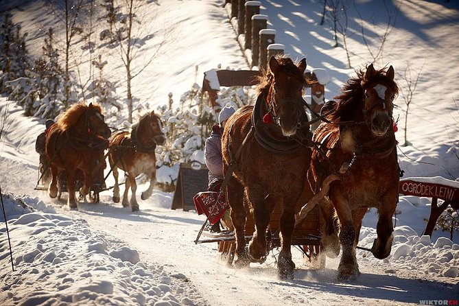 Horse Sleigh Ride in the Polish Countryside, private tour from Krakow