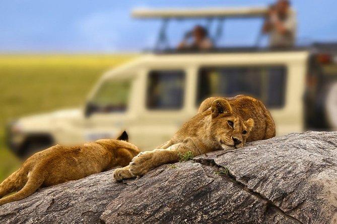 5 Days Tanzania Safari to Serengeti and Ngorongoro Crater