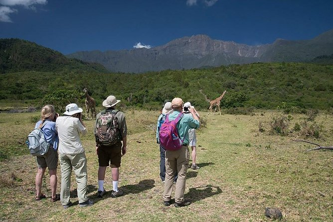 Day Trip Tour to Arusha National Park
