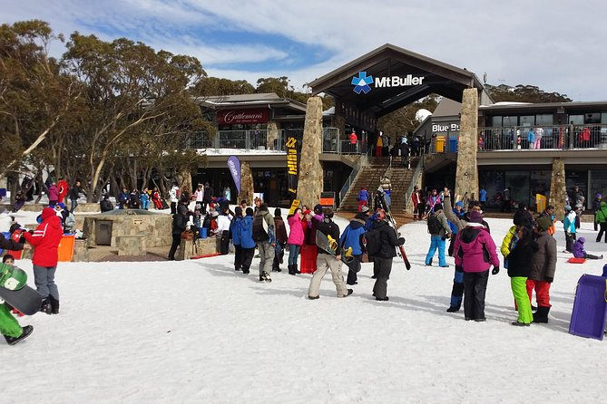 Mt Buller Day Trip from Melbourne