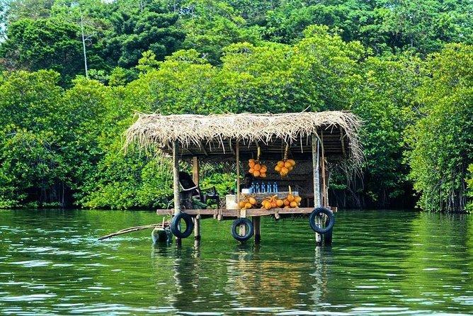 Shore excursions Colombo port passenger Terminal to Madu River safari Balapitiya