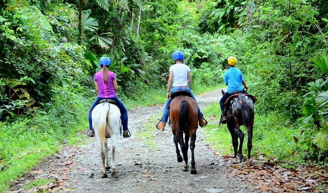 Horseback Ride to La Fortuna Waterfall