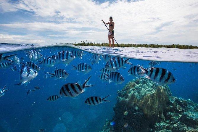 Serenity Island Resort - your Perfect Island Escape