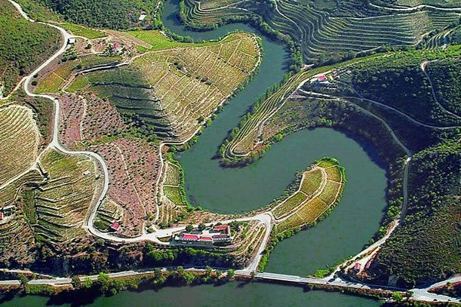 From Porto: Douro Valley Wine Private Tour Full Day with lunch and Wine tasting