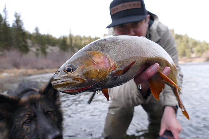 Full-Day Fly Fishing Trip in Rocky Mountain National Park