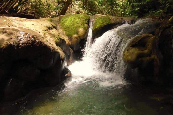 Mayfield Falls nature walk