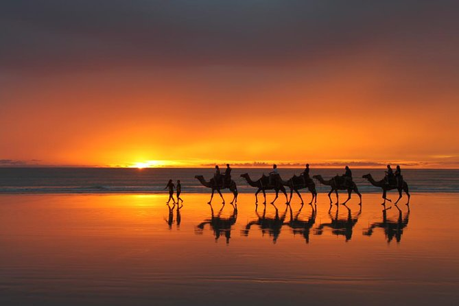 From Taghazoute : 2 Hours Agadir Camel Ride With Transfers and Tea Break