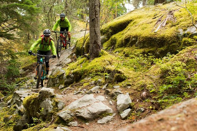Whistler Full-Day Mountain Bike Tour