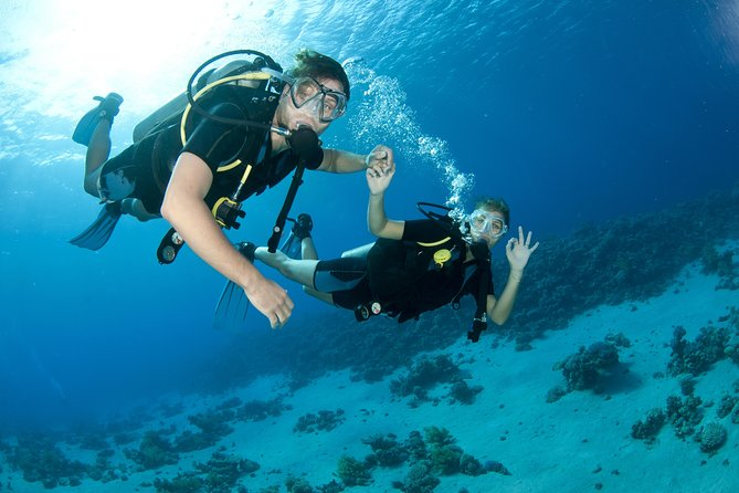 Van Dubai: Discovery Scuba Diving-reis met live BBQ-lunch in Fujairah