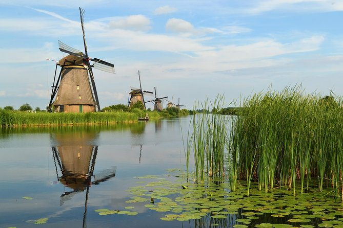Private day tour of Rotterdam and Kinderdijk by car