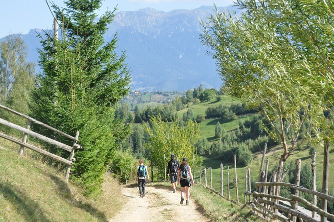 Small-Group Day Trip in Romanian Authentic Mountain Villages from Brasov