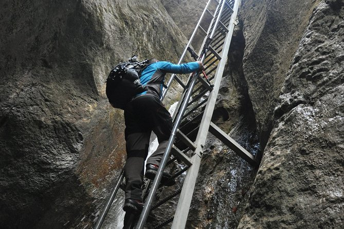 Small-Group Day Trip to the Epic 7 Ladders Canyon from Brasov