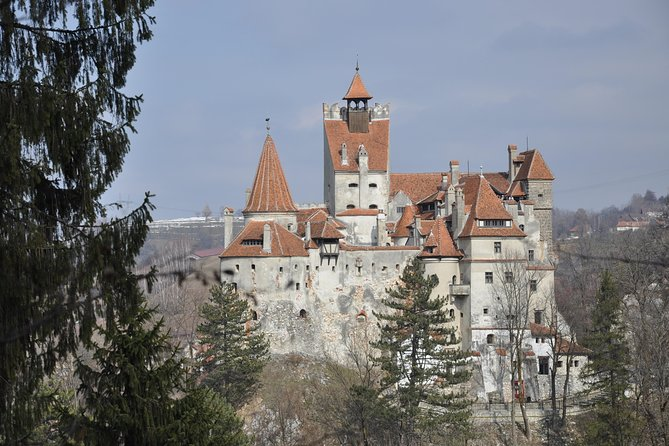 Brasov To Bran Castle And Rasnov Fortress Transylvania Tour 2021