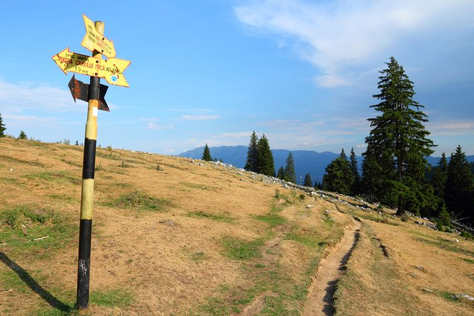 Piatra Craiului National Park Private Hiking Tour from Brasov